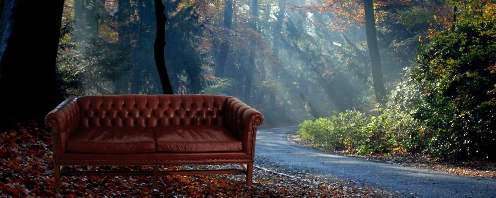 cropped-couch-in-forest.jpg